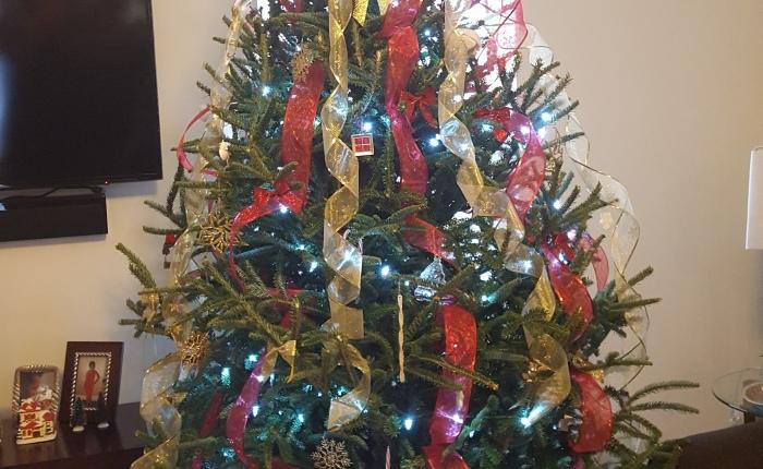 {2018} Day 2| 12 Days of Christmas | My ChristmasTree
